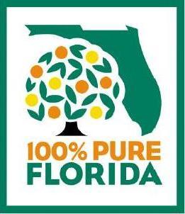 New Florence  New Renaissance : Technology and Florida Orange Juice