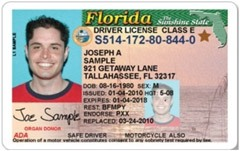 Sample-driver-license