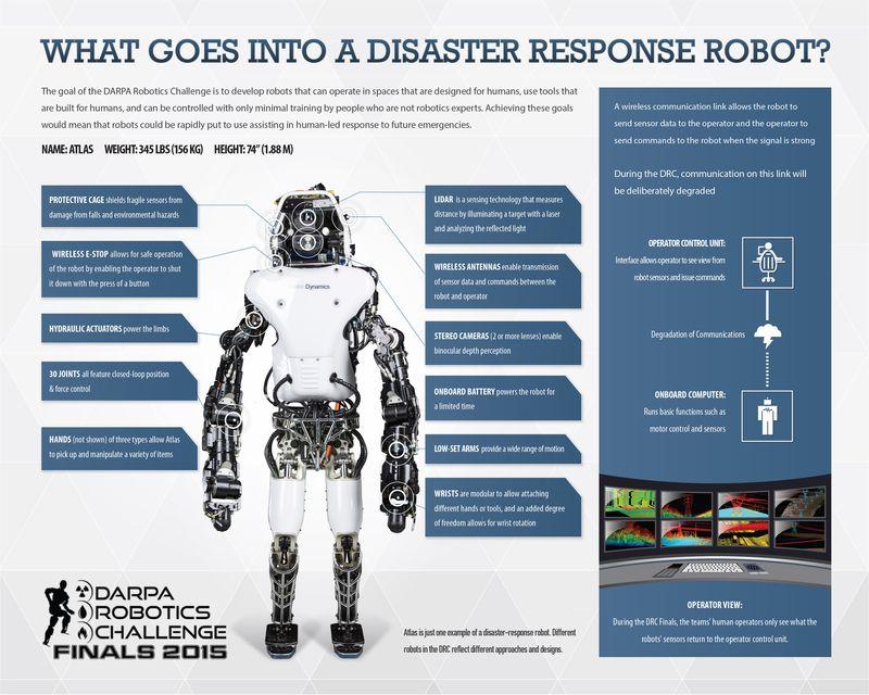 AnatomyofaRobot
