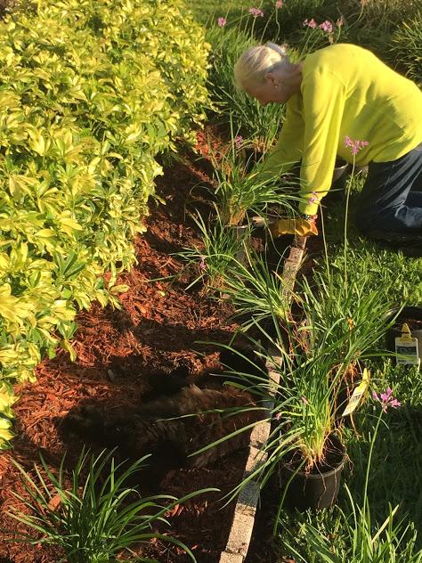 Margaret gardening