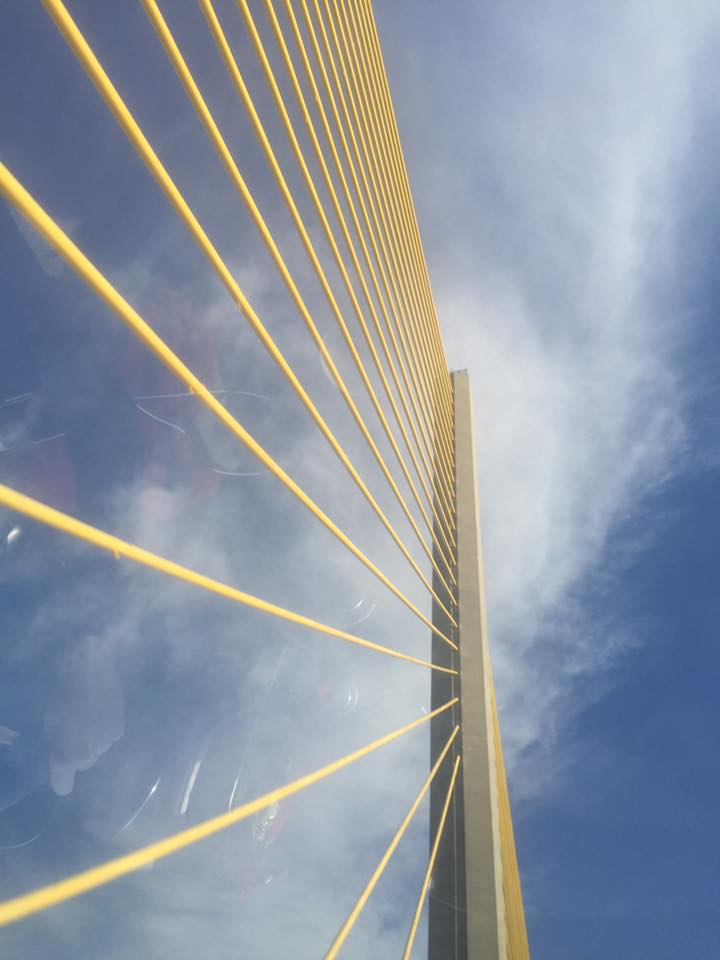 Margaret Skyway cables